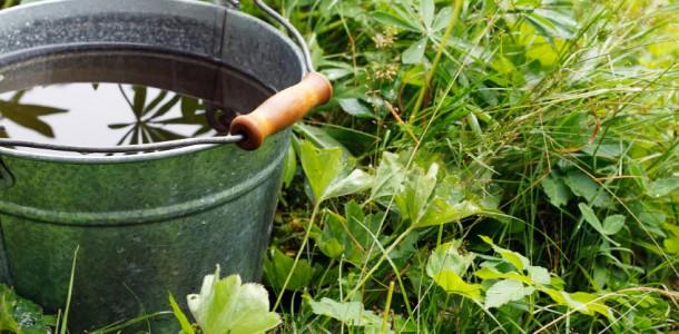 rain-water_bucket_EHI-610x300